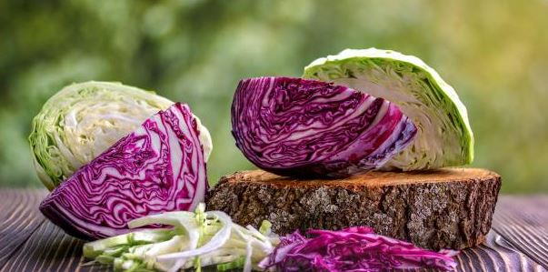 red and green cabbage halved
