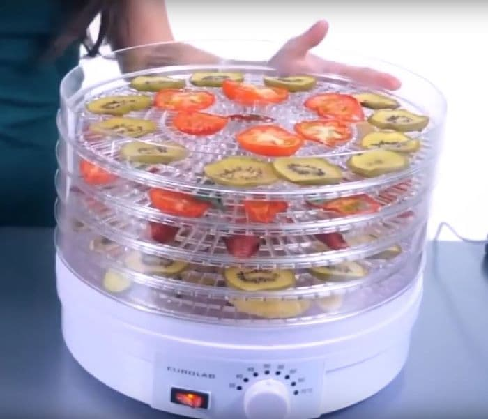 Best Cheap Food Dehydrator – Inexpensive Affordable Budget Model Reviews & Buying Guide [Upd May 2021]