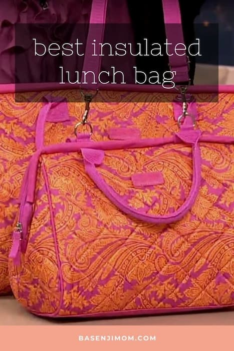 Best Insulated Lunch Bag You Can Buy In 2021 | Insulated Lunch Bags Reviews