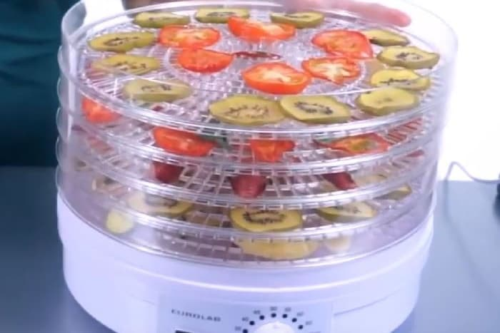Best Cheap Food Dehydrator – Inexpensive Affordable Budget Model Reviews & Buying Guide [Upd Aug 2021]